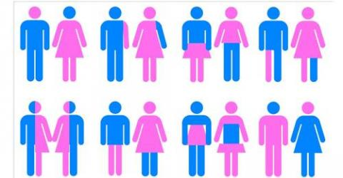 is gender identity the result of Gender identity and gender role gender identity is defined as a personal conception of oneself as several rare conditions result in anomalous.