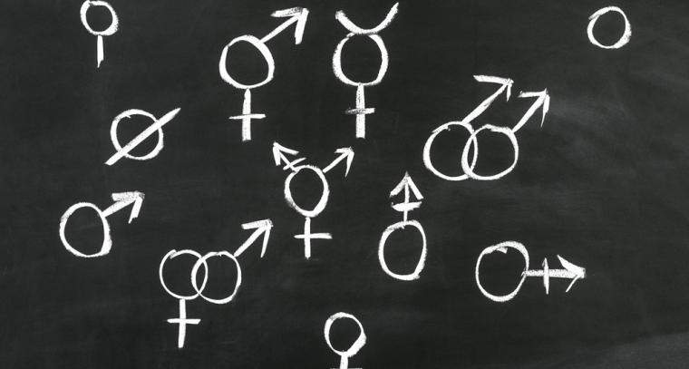 gender_signs_on_a_chalkboard.jpg